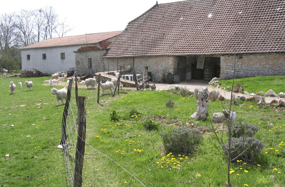 ferme-siran-activite-touristique-lot-46